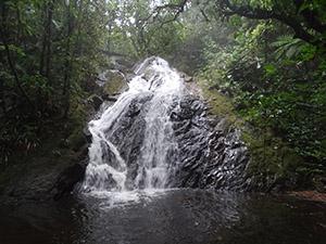 Cachoeira da Mata Atlântica – São Paulo/SP