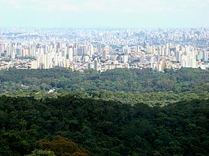 Serra da Cantareira – São Paulo/SP