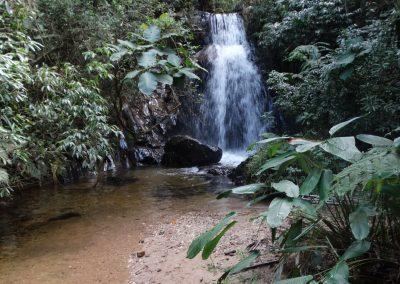 Serra do Japi – Trilha das Jabuticabeiras – Jundiaí/SP